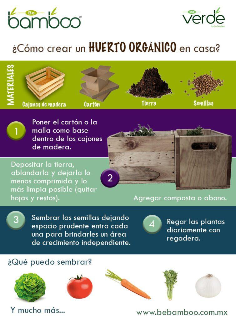 infografía como-crear-un-huerto-urbano
